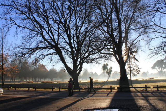 Christchurch Misty